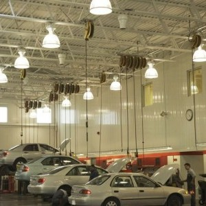 Car showrooms and dealers